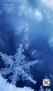 冬至节气手机海报 PSD