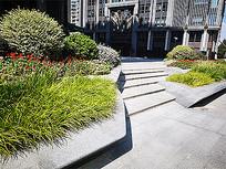 现代台阶绿化植物景观