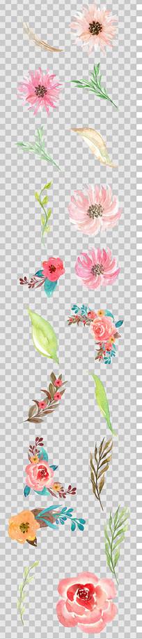 唯美森系手绘彩色菊花