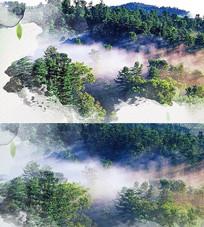 大气烟雾蒙蒙森林背景