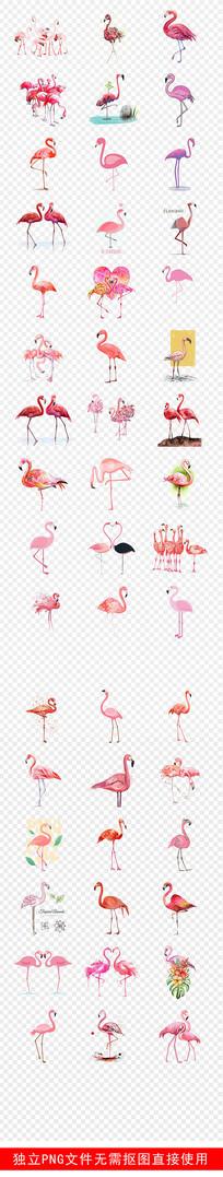 火烈鸟手绘背景墙壁纸壁画素材 PNG