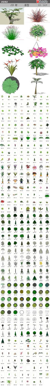 绿林绿化植物 skp