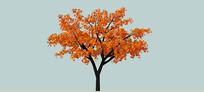 红橙色枫树SU模型