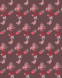 红色花朵素材
