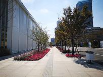 道路景观鲜花绿化