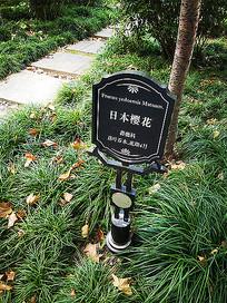 植物名称标牌名牌立柱 JPG