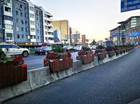 马路隔离带花箱城市绿化 JPG