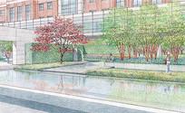 手绘公园景观绿化 JPG