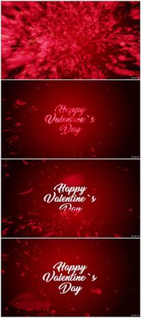 红色玫瑰花瓣婚礼情人节视频