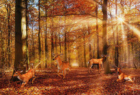 抽象油画森林梅花鹿背景墙