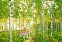 阳光森林梅花鹿电视背景墙