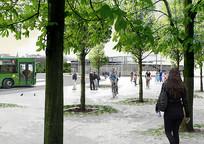 广场树池景观 JPG