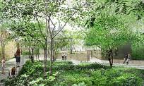 植物园田园菜园景观