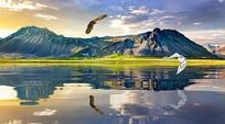 大自然河流山峰飞鸟背景墙
