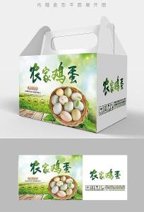 绿色鸡蛋礼盒包装设计 PSD