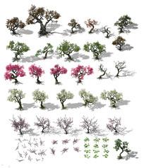 3dmax模型-精美树木合集