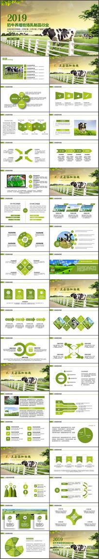 畜牧业乳业农场养殖奶牛PPT