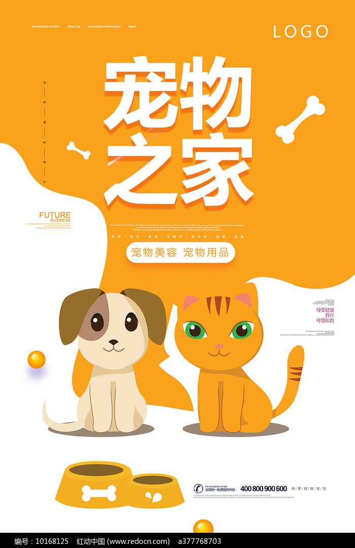 宠物宣传海报设计图片