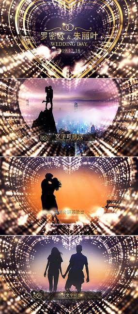 高端华丽金色粒子婚礼AE视频模板