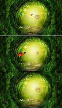卡通森林蝴蝶背景视频素材