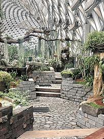 植物园景观盆景