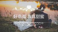 PR婚礼字幕花纹标题视频模板