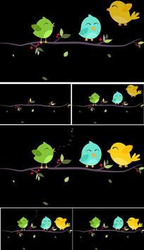 小鸟透明通道背景视频素材