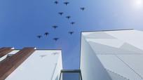 掠过别墅天空的飞鸟