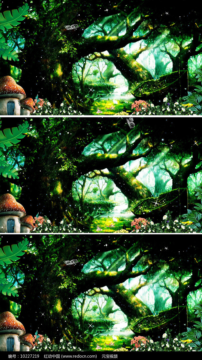 唯美梦幻森林背景视频素材