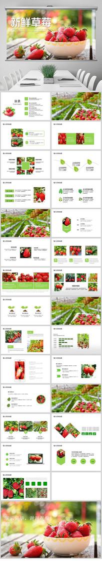 新鲜草莓种植草莓介绍PPT