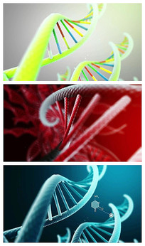 DNA分子结构视频素材