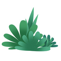 手绘植物插画素材免扣元素