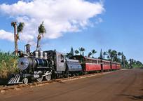 乡村田园的观光火车