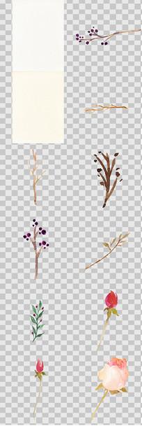 手绘水彩花卉元素