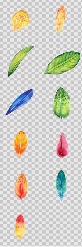 手绘彩色叶子羽毛元素