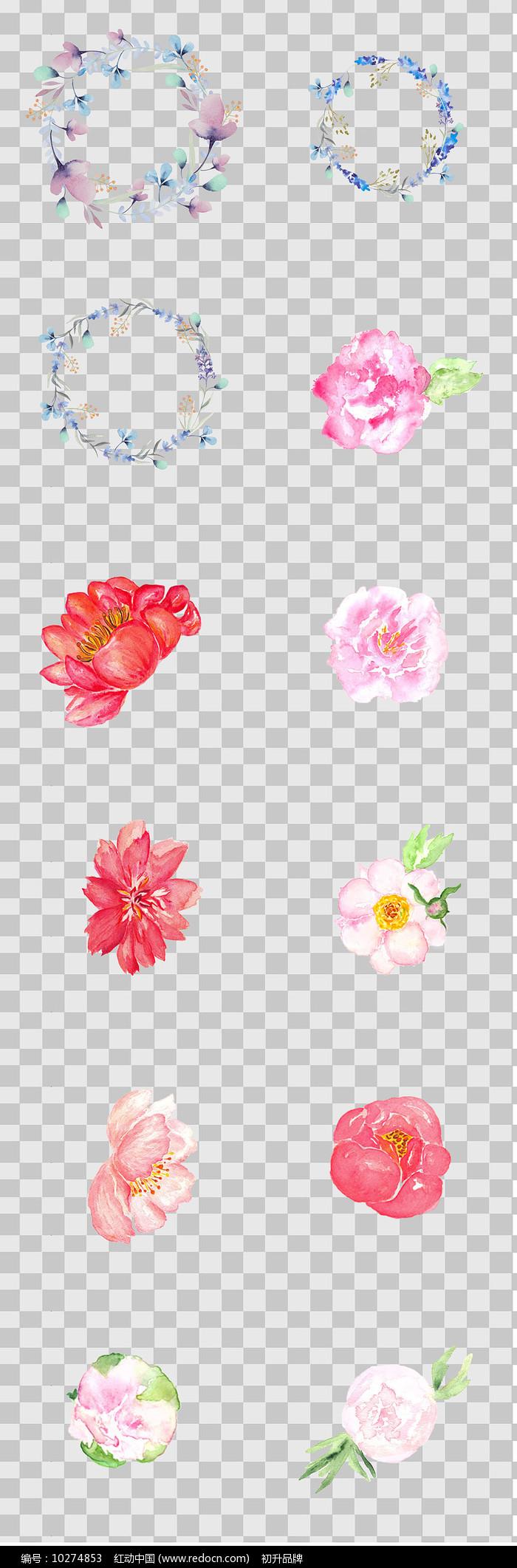 水彩手绘花卉素材图片