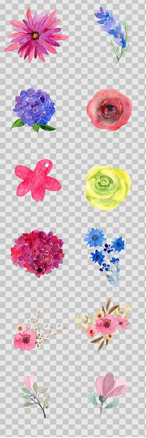 水彩手绘花卉素材