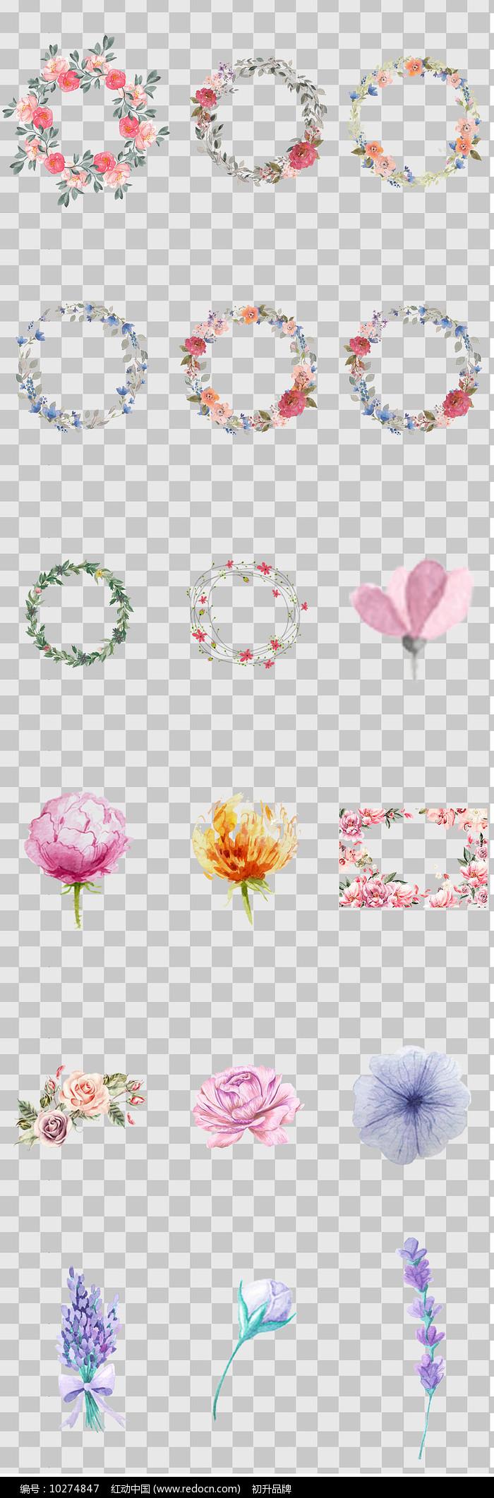 水彩手绘花卉元素图片