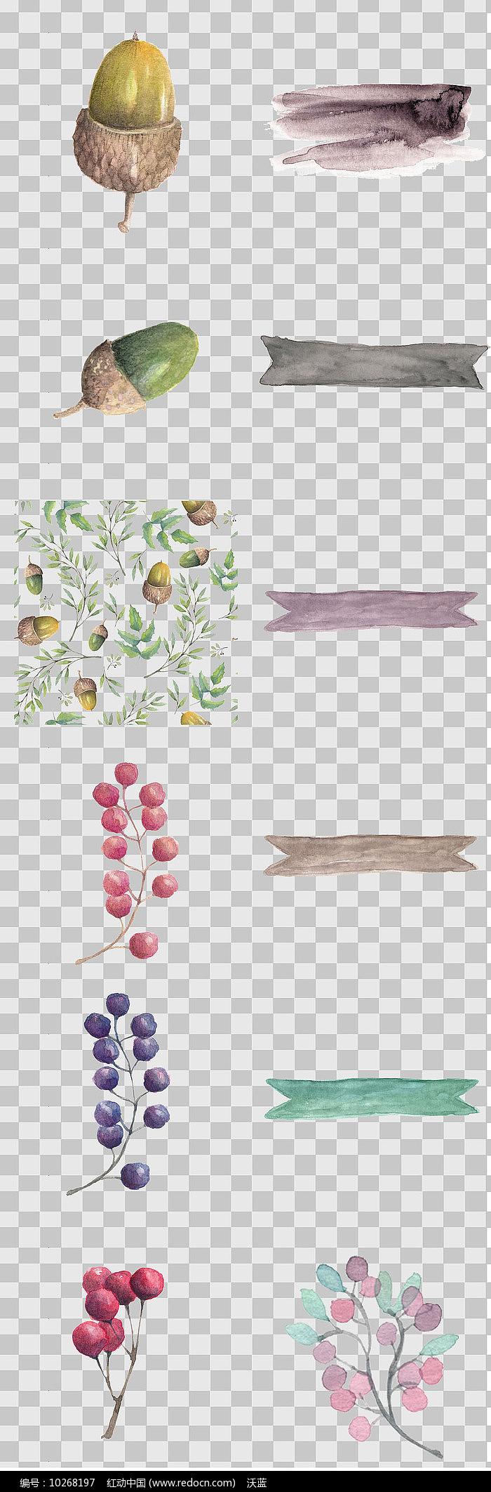 唯美森系松子 花卉素材图片