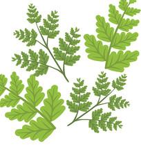 绿色树叶叶子插画元素