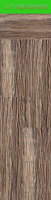 高清树皮JPEG图片 JPG
