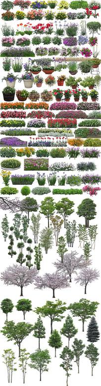 高清植物绿化效果图后期PS分层素材专用