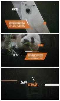 丛林保护动物介绍视频模板