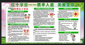 世界红十字日宣传展板