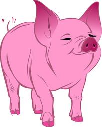 可爱小猪插画
