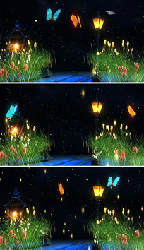 唯美夜色星空虫儿飞背景视频