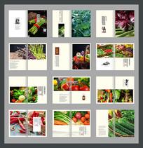 蔬菜产品宣传画册
