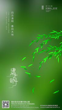 小清新清明节海报