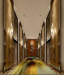 创意地毯电梯厅3D模型
