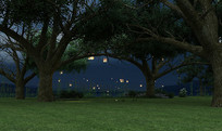 树下大槐树下
